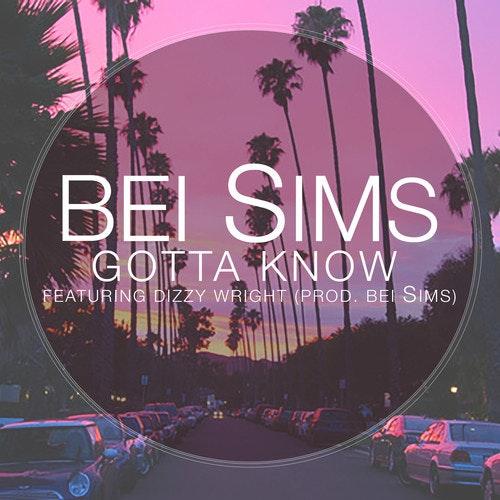 bei-sims-gotta-know