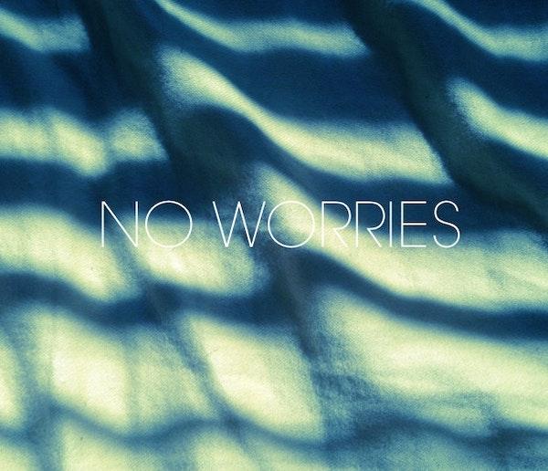 meeko-fly-no-worries