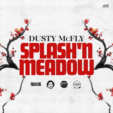 dusty-mcfly-splash-n-meadow