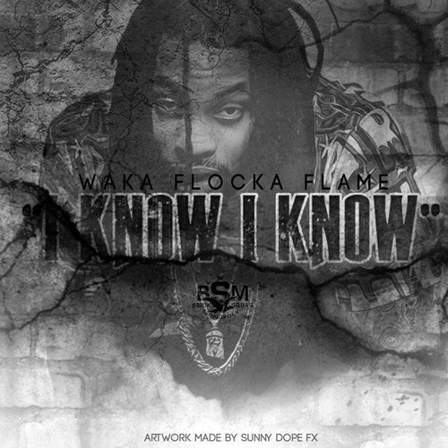 Waka-Flocka-Flame-i-know-i-know