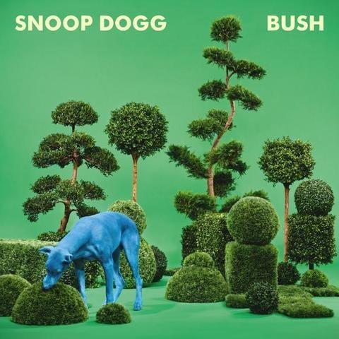 snoop-dog-bush