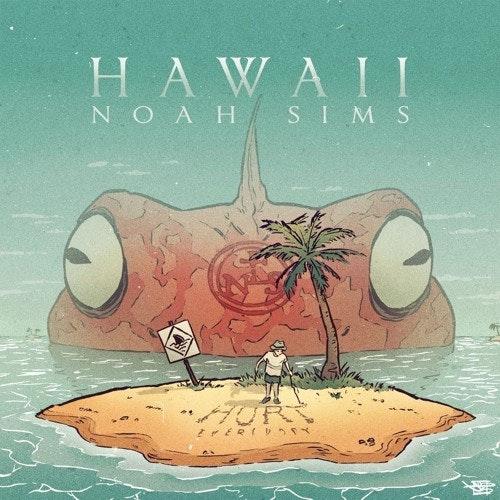 noah-sims-hawaii